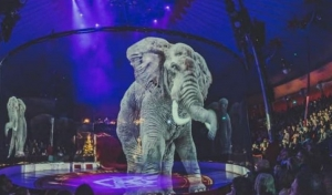 Regresan los animales al circo mexicano